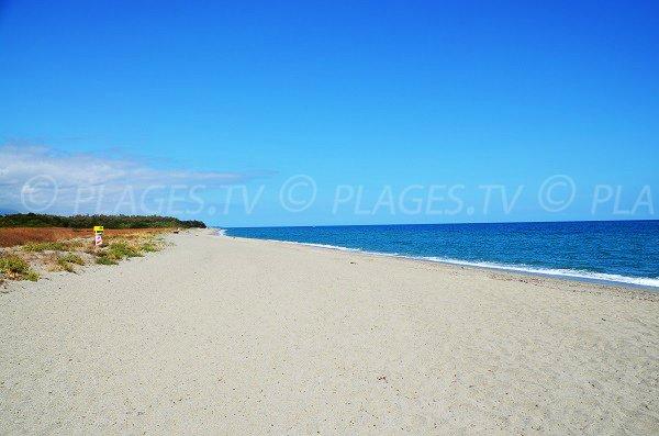 Photo of Linguizzetta beach in Corsica