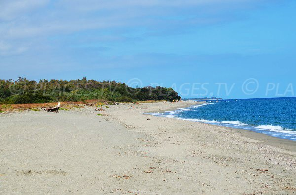 North of Linguizzetta beach - Corsica
