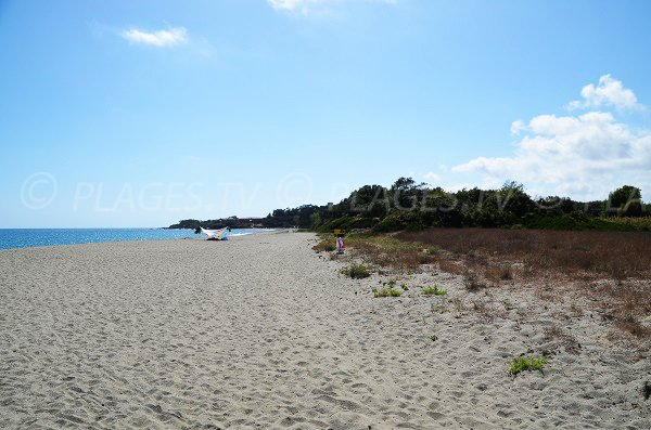 Photo of Linguizzetta beach with view on the Bravone Marine