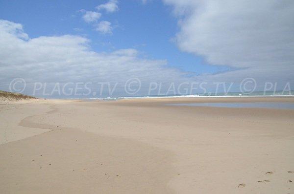 Plage de sable fin à Lacanau à côté de la maison forestière du Lion