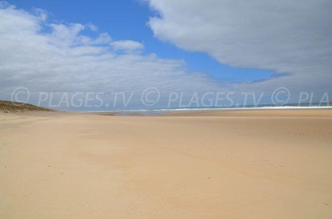 Lion beach in Lacanau-Ocean