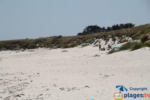Dunes de la plage de Lividic à Plounéour-Trez - Bretagne