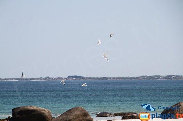 Rochers autour de la plage du Lividic à Plounéour-Trez