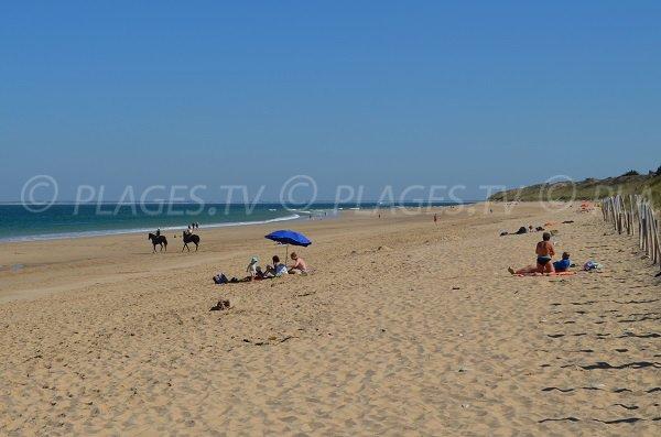 Photo de la plage du Lizay - Les Portes en Ré
