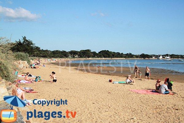Grande plage de sable sur le Golfe du Morbihan - Larmor-Baden