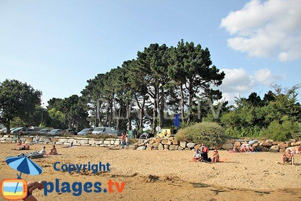 Environnement de la plage de Locmiquel en Bretagne