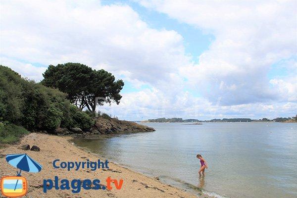 Plage à Sarzeau du côté du golfe du Morbihan - Logéo
