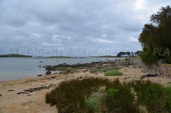 Environnement de la plage du Losquet sur l'Ile Grande