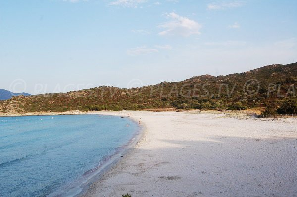 Sand beach in Saint Florent in Corsica