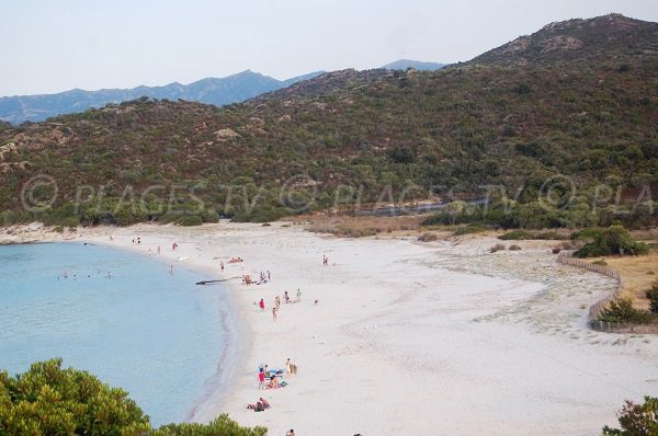 Beautiful beach in St Florent - Corsica