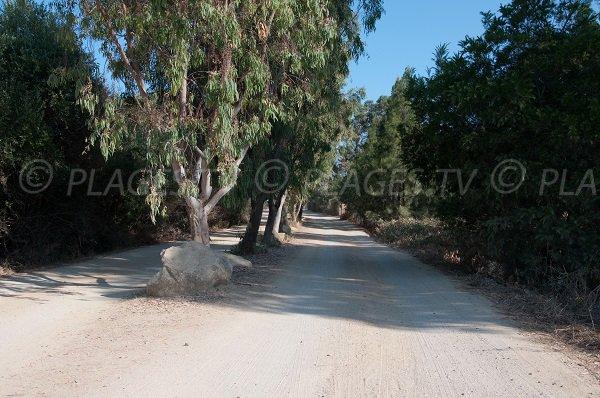 Chemin d'accès à la plage de Lozari