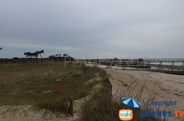 Photo de la plage de Lyarne à Les Moutiers en Retz