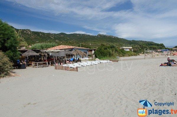 Paillote sur la plage Vignola