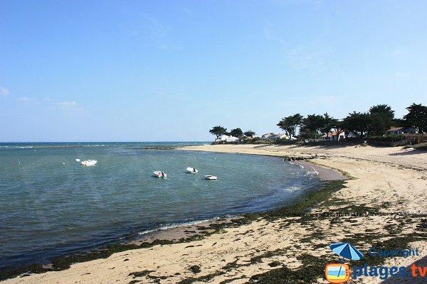 Plage de la Madeleine - Petit Vieil - Noirmoutier