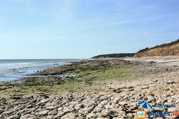 Vue de la plage Légère et Ragounite - Jard sur Mer