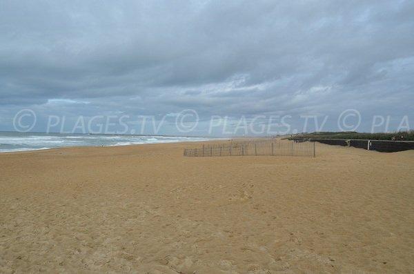 Quiet beach in Anglet