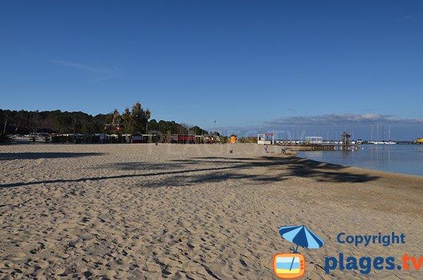 Photo de la plage de Maguide à Biscarrosse