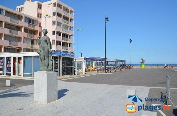 Commerces sur la place Maillol - St Cyprien