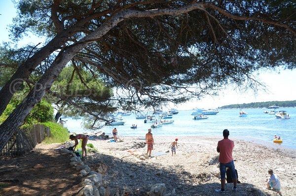 Pointe de la plage de la maison Forestière sur l'ile de Ste Marguerite