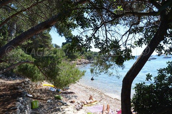 Partie gauche de la plage proche de la maison forestière