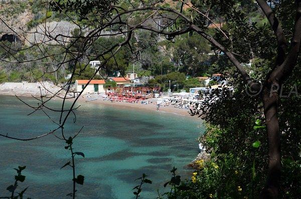 Spiaggia Mala e la vegetazione - Francia