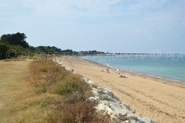 Photo de la plage de Malaiguille de La Brée les Bains