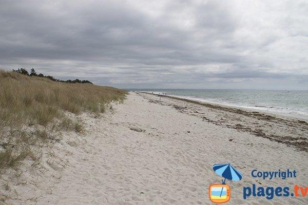 Plage et dunes de Cleut Rouz - Fouesnant