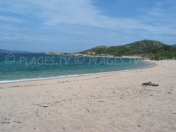 Photo de la plage de Maora à Bonifacio