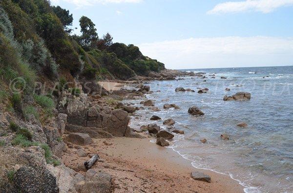 Wild beach in Porticcio in Corsica - Maquis