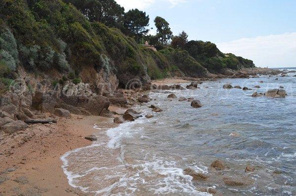 Maquis beach in Porticcio in Corsica