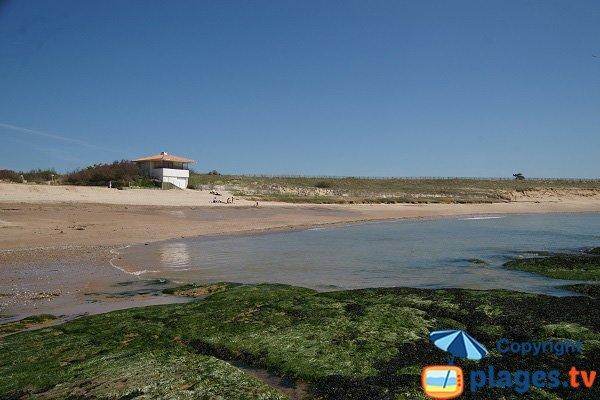Vue sur la plage du Marais de Girard - Brétignolles - Vendée