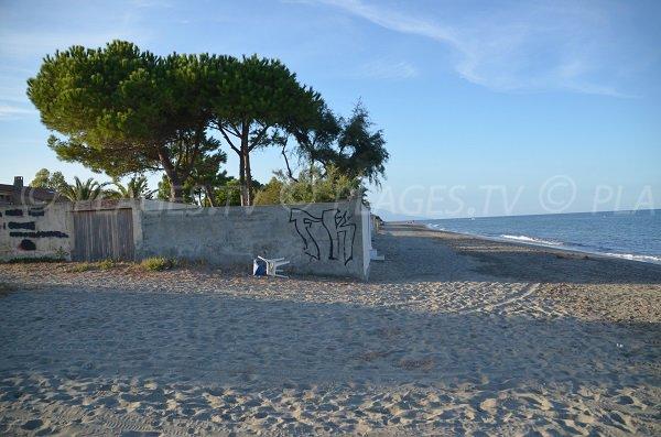 Photo vers le nord de la plage de la Marana en Corse