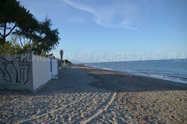 Plage de sable de la Marana en Corse