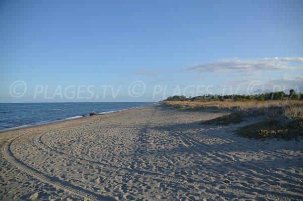 Photo de la plage de Marana à Lucciana en Corse