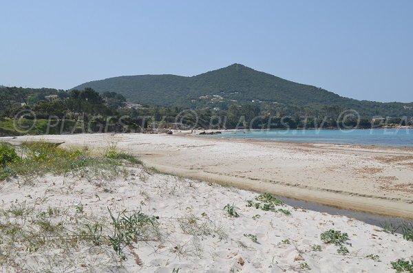 Plage d'Argent à Pietrosella en Corse