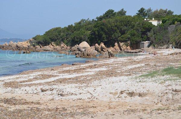 Rochers sur la plage de Mare e Sole à Pietrosella en Corse