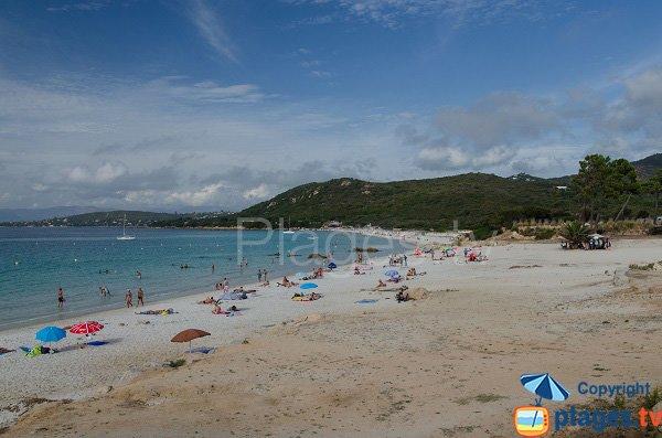 Photo of Mare e Sole beach - Corsica