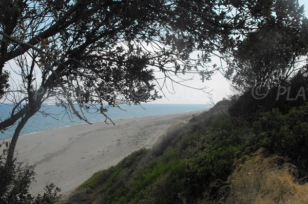 Photo de la plage de Mare e Stagnu en Corse - Aléria