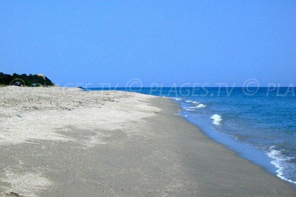 Beach near the Diane pond - Corsica