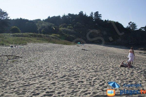 Environnement de la plage de la Mare - Saint Cast Guildo