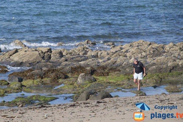 Pêche sur la plage de la Mare - Saint Cast