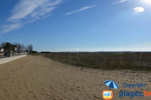 Environnement de la plage de Marennes