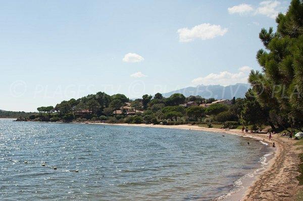 Shaded beach in Porto-Vecchio - Marina di Fiori