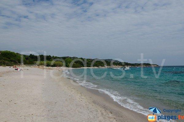 Sand beach near marina di Fiori - Bonifacio