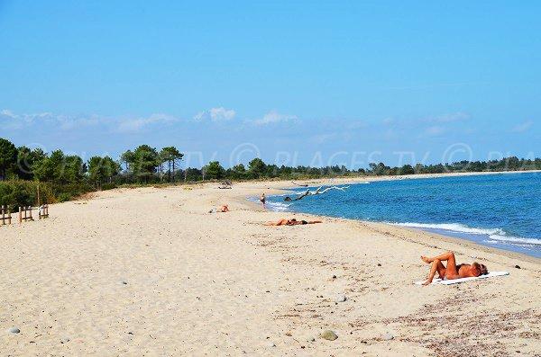 Spiaggia selvaggia a Solaro Corsica vicino alla base aerea