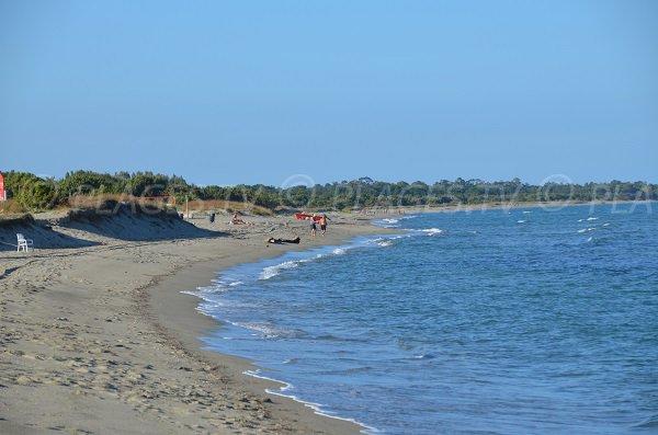 Grande plage de sable à Sorbo Ocagnano