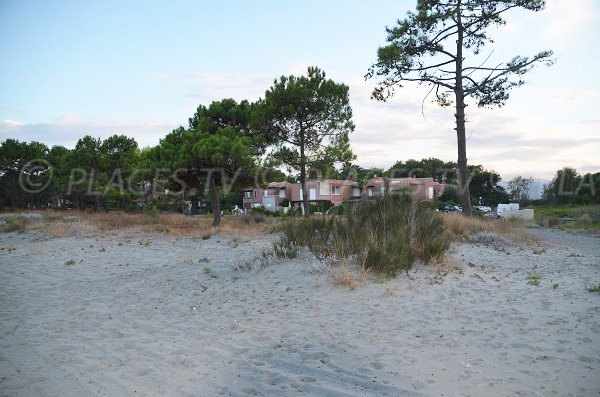 Environnement de la plage des Marines de Borgo