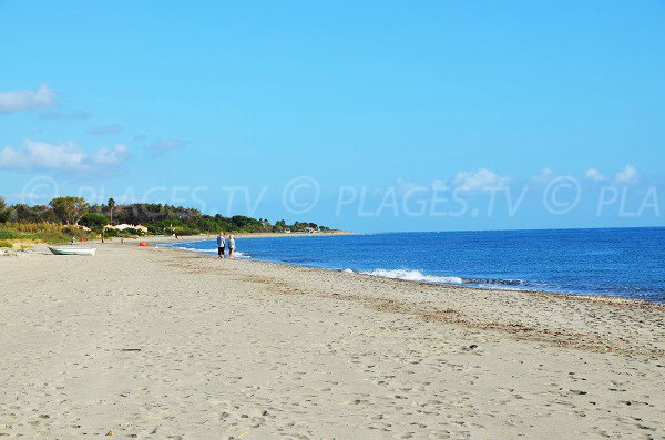 Centre de la plage des marines de Fiumaltu