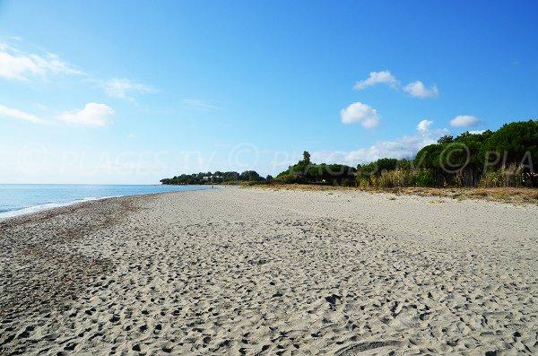 Vue de la plage de Taglio Isolaccio depuis les marines du Fiumaltu