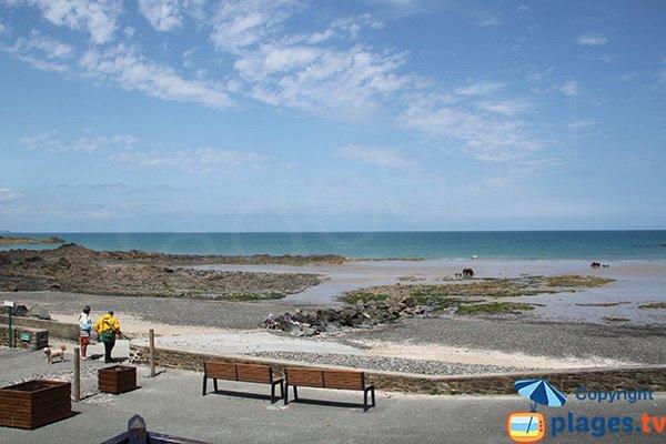 Photo de la plage de Martin-Plage à Plérin